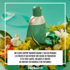 Eden - Eau de Parfum - 12916033