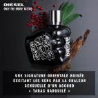 Only the Brave Tattoo - Eau de Toilette - 28918055