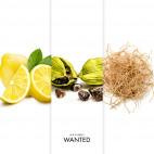 Coffret Azzaro Wanted - 06722J23