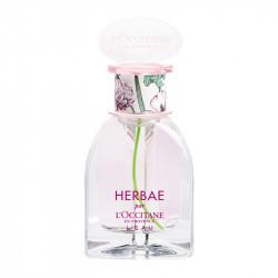 Herbaé L'Eau - 67514175