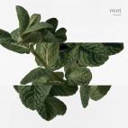 Coffret Eau d'Orange Verte - 4712870C