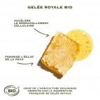 Crème Anti Âge Éclat à la Gelée Royale - SAN52008