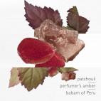 L Ambre des Merveilles - Eau de Parfum - 47113B35