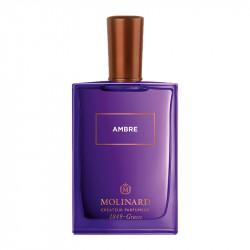 Ambre - 62913845