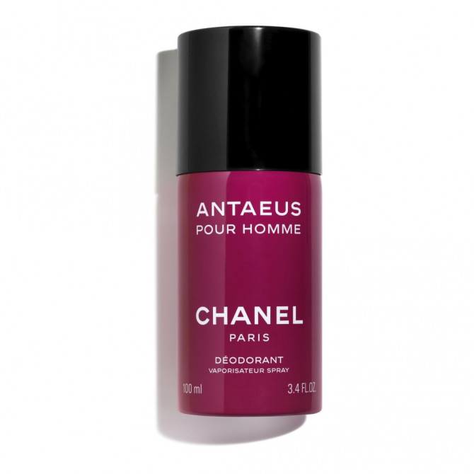 ANTAEUS - 18478816