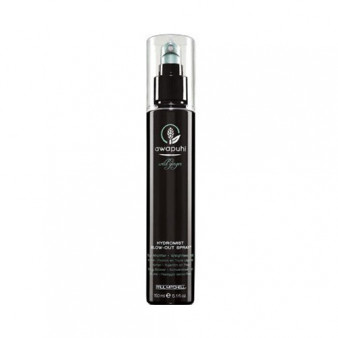 Hydromist Blow-Out Spray - PAM.84.025