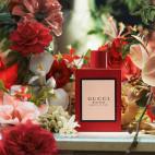 Gucci Bloom Ambrosia Di Fiori - 43013843