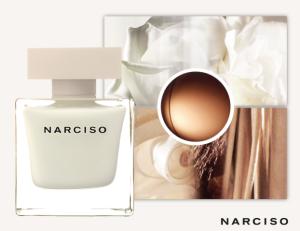 narciso-edp1