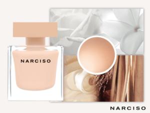 narciso-edpp3