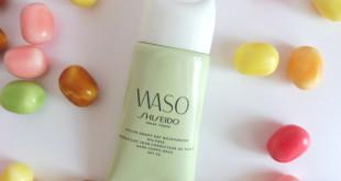 waso-header
